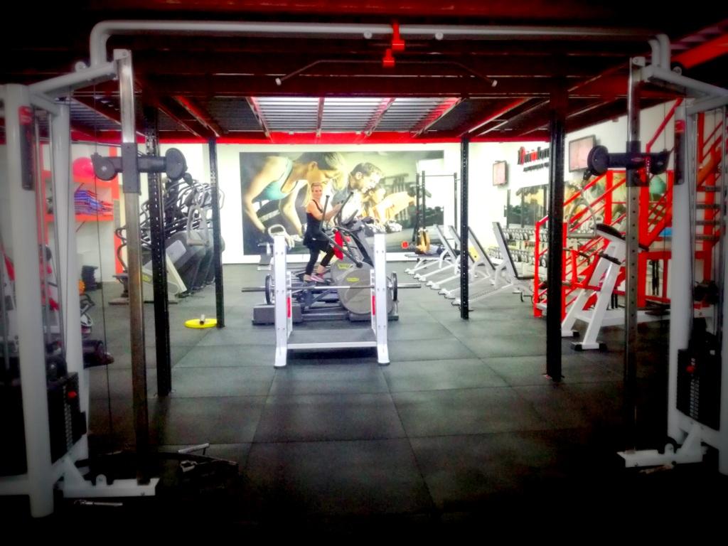 Vivinforma Official Hammer Strength Center