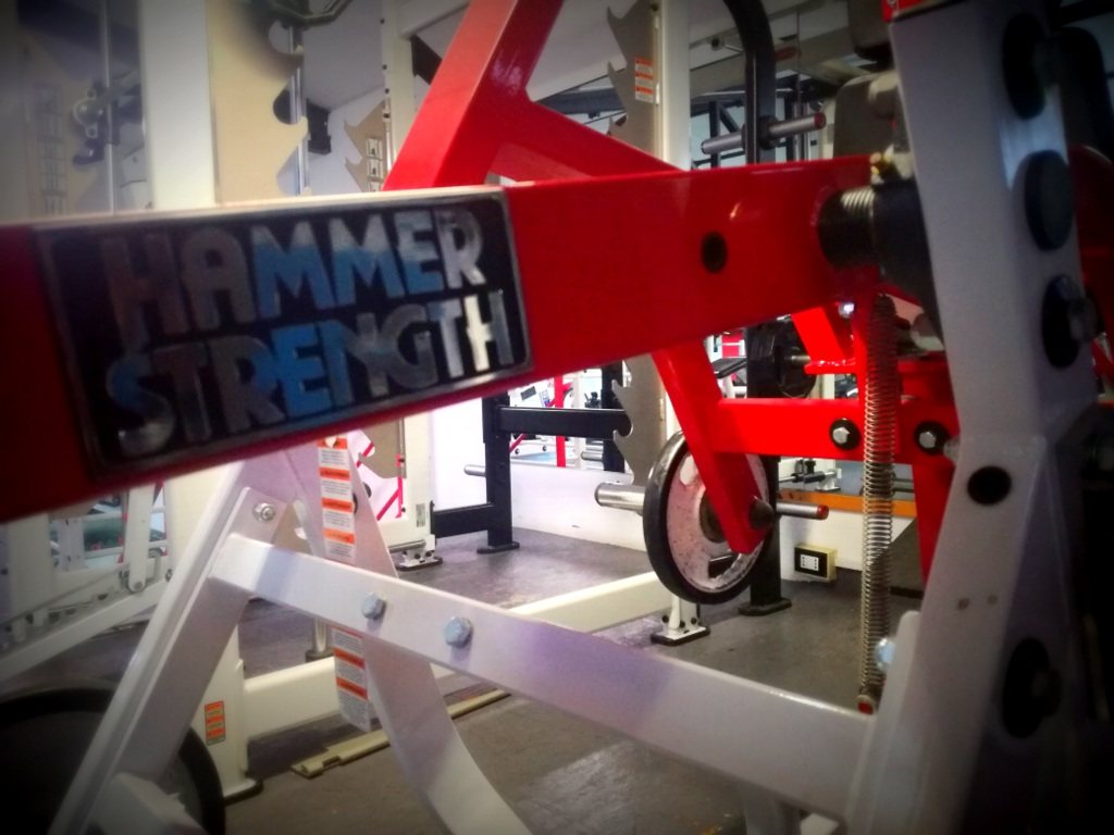 Vivinforma Official Hammer Strength Center